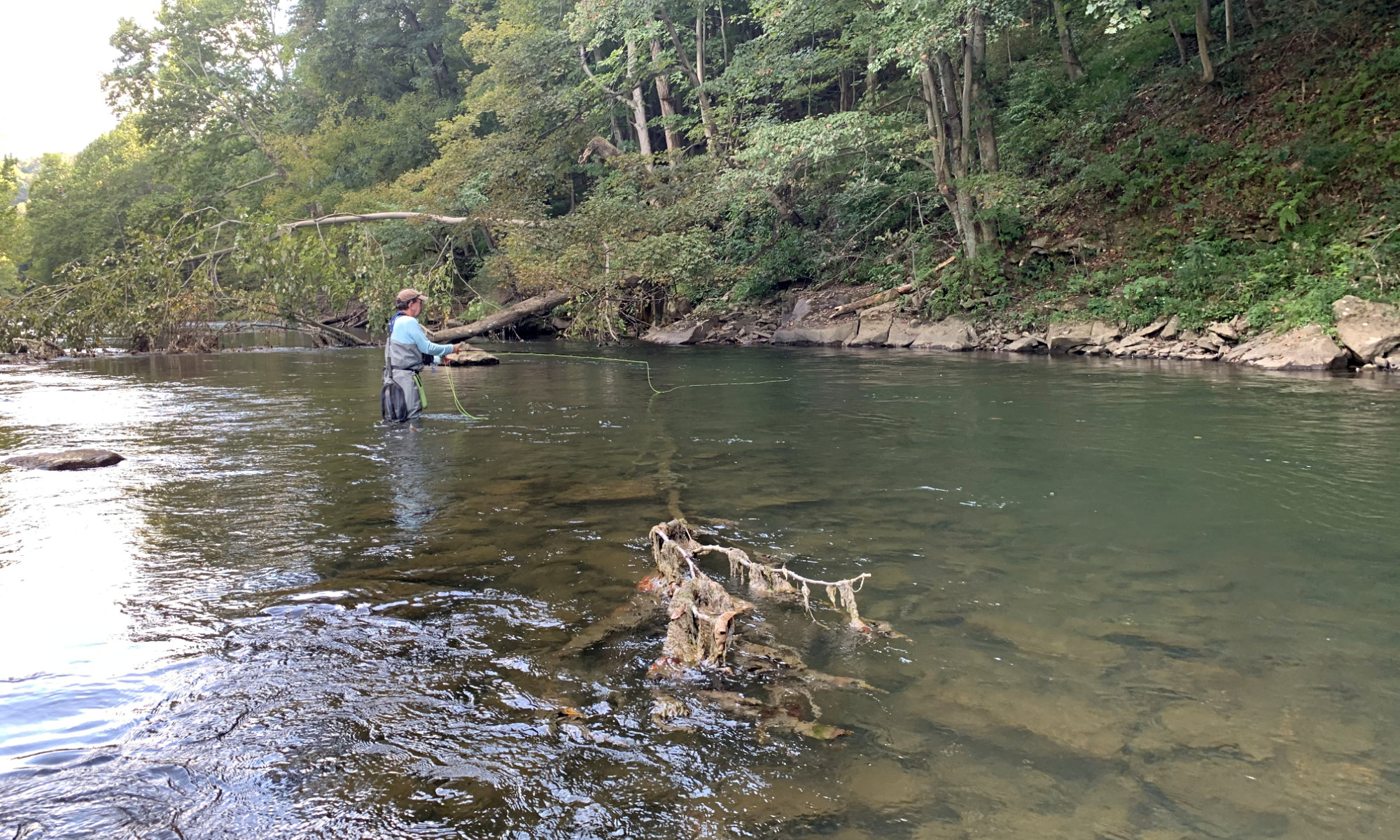 Potomac Valley Fly Fishers